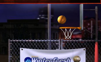 Play Basketball 16 game on Perro-Electric.Com