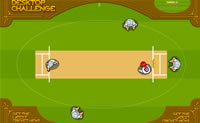Play Cricket 2 on Perro-Electric.Com