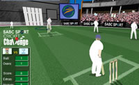 Play Cricket on Perro-Electric.Com