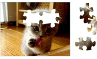 Play Kitten Puzzle 2 game on Perro-Electric.Com