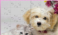 Play Dog Puzzle game on Perro-Electric.Com
