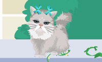 Play Eva's New Cats game on Perro-Electric.Com