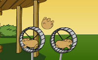 Play Hamster Flying on Perro-Electric.Com