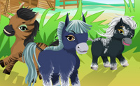 Play Horse Farm Assistant game on Perro-Electric.Com