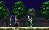 Play Castlevania on Perro-Electric.Com