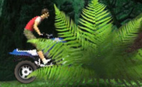 Play Jungle ATV game on Perro-Electric.Com