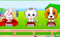 Play My Cute Pets 2 online on Perro-Electric.Com