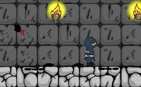 Play Ninja Plus game on Perro-Electric.Com