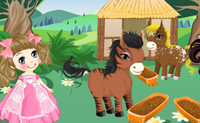 Play Princess' Ponies game on Perro-Electric.Com