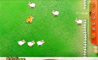 Play Catching Sheep online on Perro-Electric.Com