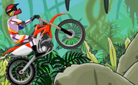 Play Stunt Dirt Bike 2 game on Perro-Electric.Com