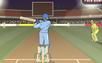 Play Cricket 3 game on Perro-Electric.Com
