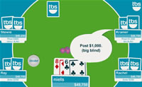 Play Texas Hold'em Poker game on Perro-Electric.Com