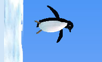 Play Penguin Whacking 13 game on Perro-Electric.Com
