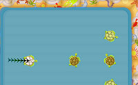 Play Turtle Pool game on Perro-Electric.Com
